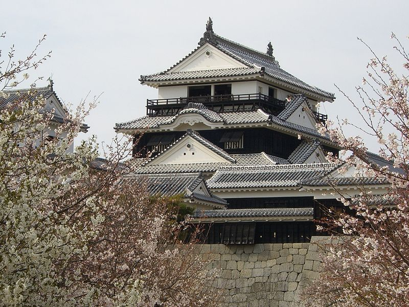 Matsuyama Castle in Japan
