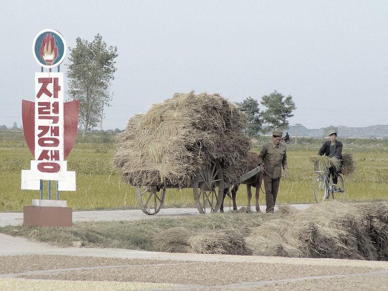 Chonsam Cooperative Farm