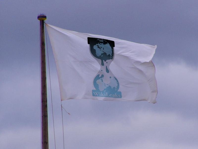 Wikileaks flag