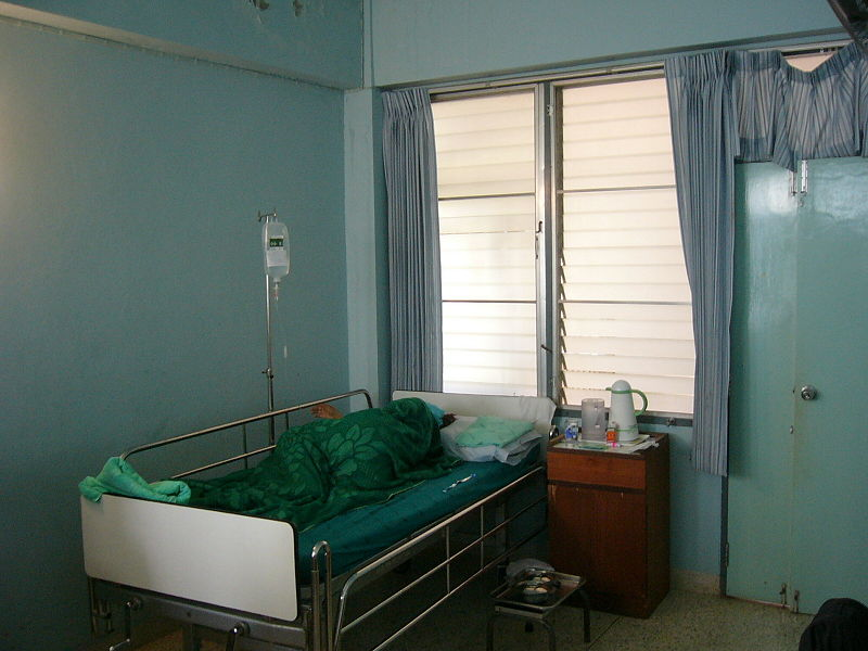 Thais at risk as bird flu breaks out in Vietnam